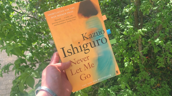 LIZZIE READS … NEVER LET MEGO