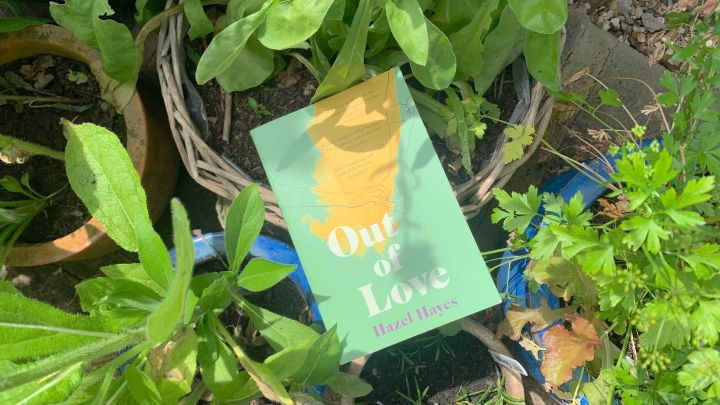 OUT OF LOVE – HAZELHAYES